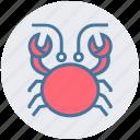 cockroach, crab, food, mud crab, sea creature, seafood icon