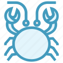 cockroach, crab, food, mud crab, sea creature, seafood icon