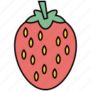 chocolate, healthy, strawberries, strawberry icon