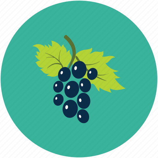 bunch of grapes, food, fruit, grapes icon