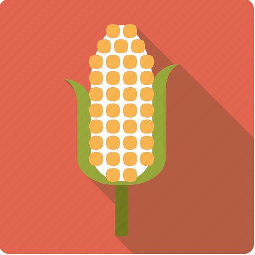 agriculture, cereal, cob, corn, food, plant icon