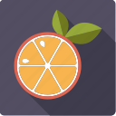 citrus, food, juicy, leaves, orange, slice icon