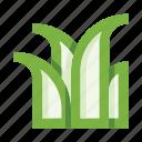 grass, herb, garden, nature, plant, gardening, ecology