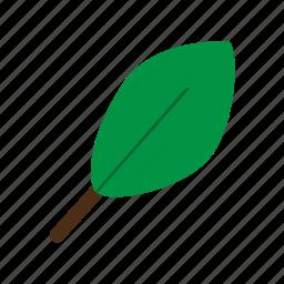 leaf, plant, spring icon