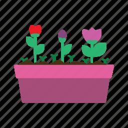 flower, flowers, garden, gardening, plant, soil, spring icon
