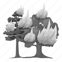 eco, ecology, fire, flame, forest, nature, tree icon