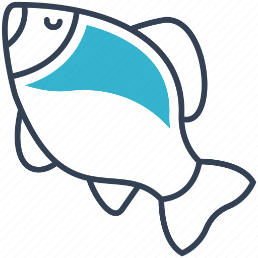 animal, crucian, fish icon