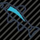 animal, fish, gudgeon icon