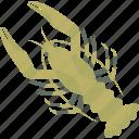 crayfish, food, freshwater, sea