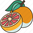 grapefruit, citrus, fiber, diet, healthy