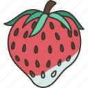 strawberry, fleshy, sweet, dessert, delicious