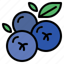 blueberries, blueberry, fruit, sweet icon