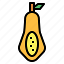 food, fruit, papaya, vegetable icon