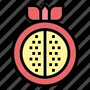 food, fruit, pomegranate, sweet icon