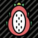 pitaya, fruit, food, sweet icon