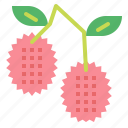 food, fruit, healthy, lychee icon
