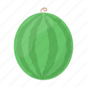 berry, food, fresh, fruit, health, vitamin, watermelon icon