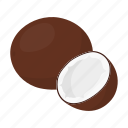 coconut, exotic, food, fresh, fruit, health, vitamin icon