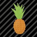 food, fresh, fruit, health, pineapple, vitamin