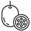 food, fruit, passion, vegetable icon