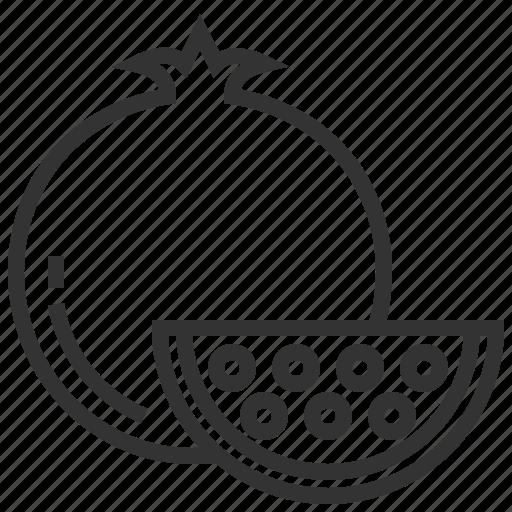 food, fruit, plant, pomegranate icon