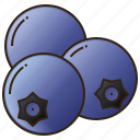 blueberry, diet, food, fruit, healthy icon