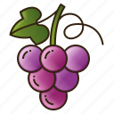 diet, food, fruit, grape, healthy