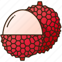 diet, food, fruit, healthy, lychee icon