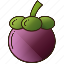 diet, food, fruit, healthy, mangosteen icon