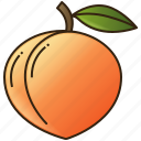 fruit, food, peach, healthy, diet icon