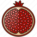 diet, food, fruit, healthy, pomegranate icon