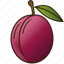 food, fruit, healthy, plum, victoria icon
