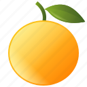 diet, food, fruit, healthy, orange