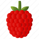 diet, food, fruit, healthy, raspberry