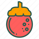food, fruit, healthy, mangosteen icon