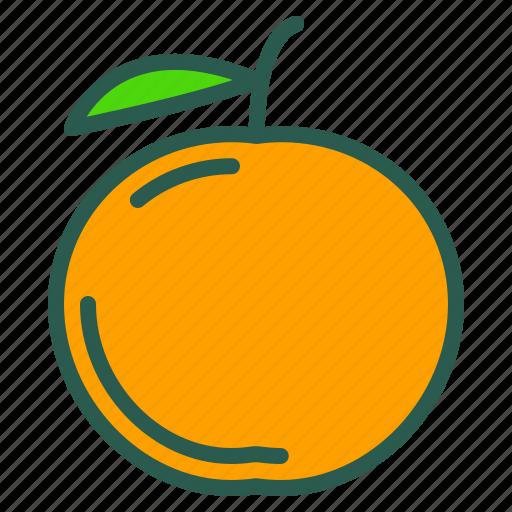 Food, fruit, healthy, orange icon - Download on Iconfinder