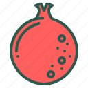 food, fruit, healthy, pomegranate icon