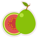 food, fresh, fruit, guava, healthy, meal icon