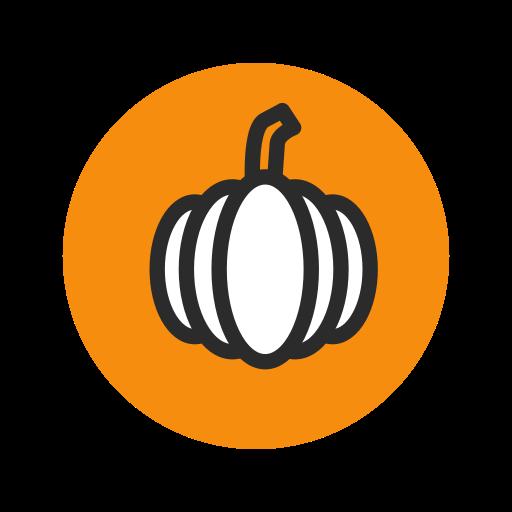 fruit, orange, pumpkin, vegetable, vegetarian icon