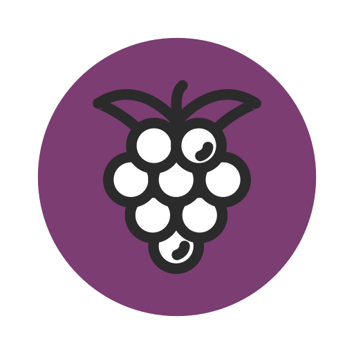 Fresh, fruit, grape, healthy, purple, vegetable icon - Free download