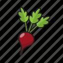 art, beet root, color, food, fruit, vegetable