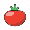 color, food, fruit, red, tomato, vegetable icon