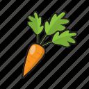 carrot, color, cook, food, fruit, vegetable