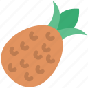 food, fruit, healthy food, pineapple, tropical icon