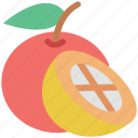 citrus, citrus fruit, food, fruit, half of orange, healthy food, orange icon