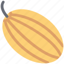 cucurbita maxima, cucurbita pepo, food, pumpkin, vegetable icon