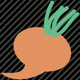 food, fresh, swede, turnip, vegetable, white icon