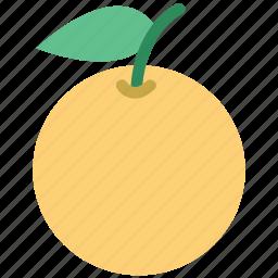citrus, citrus fruit, food, fruit, healthy food, orange icon