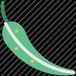 cayenne, chili, chilli pepper, jalapeno pepper, pepper, vegetable icon