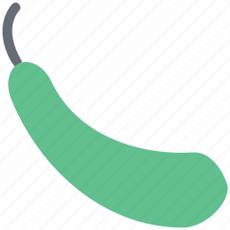 bottle gourd, food, gourd, vegetable icon